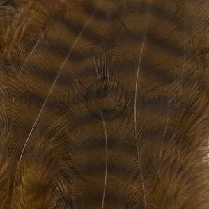Grizzly Soft Hackle Brown