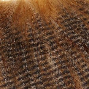 Grizzly Craft Fur Ginger